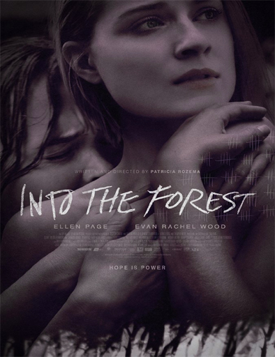 Ver Into the Forest (2015) Online