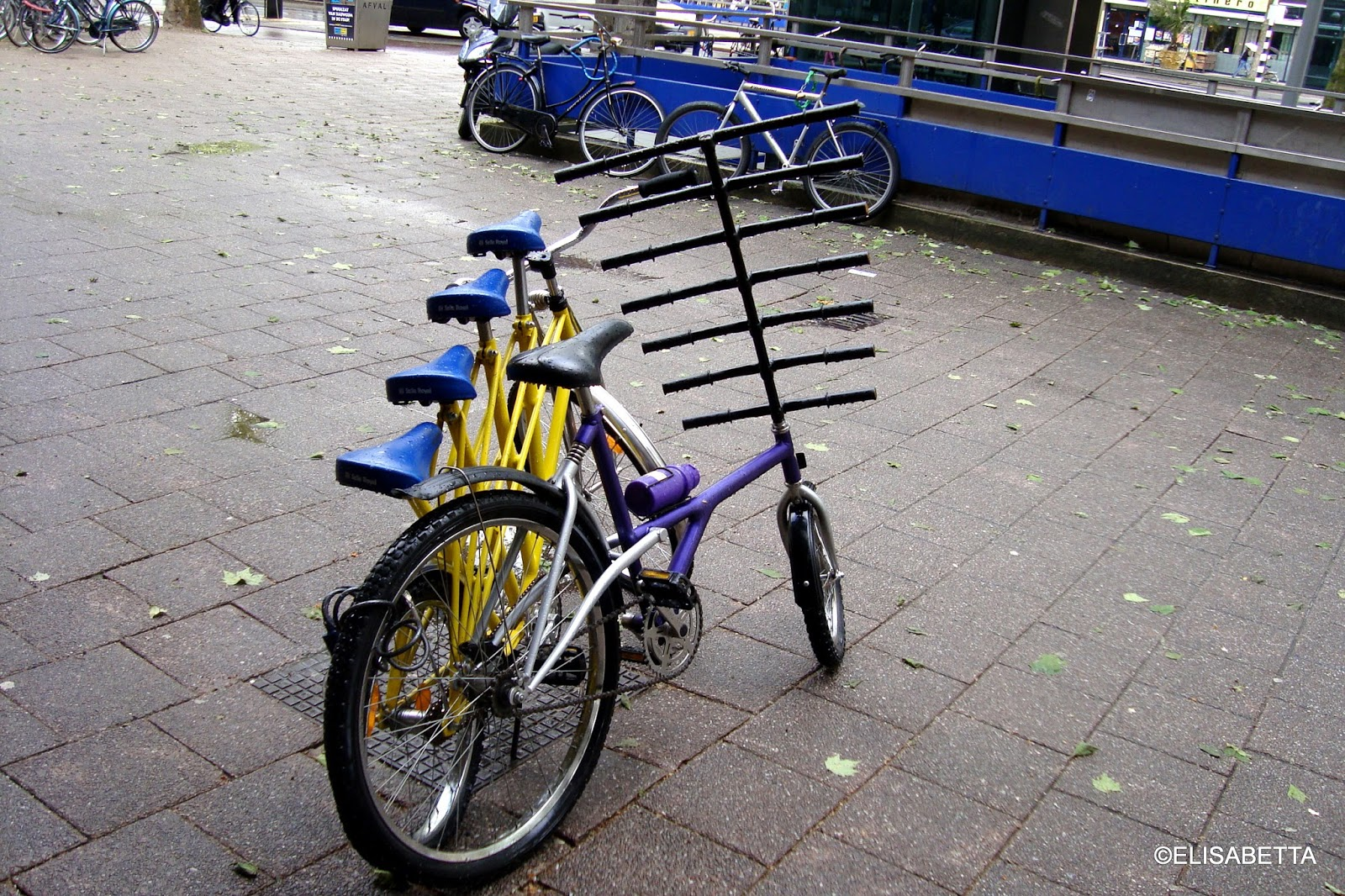 morgen ist alles anders fahrrad ist nicht gleich fahrrad. Black Bedroom Furniture Sets. Home Design Ideas