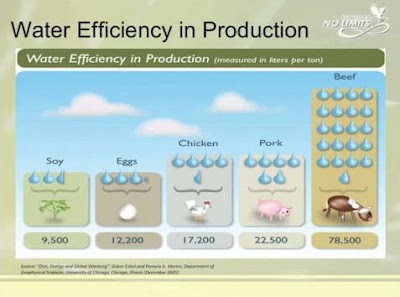 eficienta consumului de apa