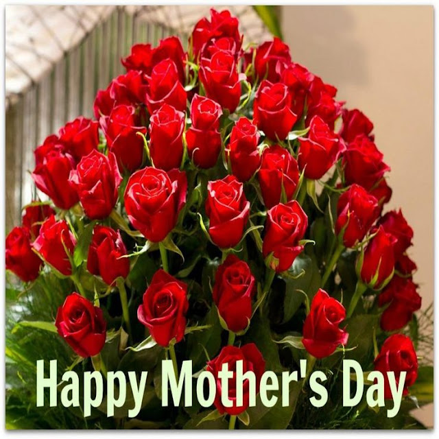 Happy Mothers Day 2017 Pink & Red Roses For Mom (***Fresh****)