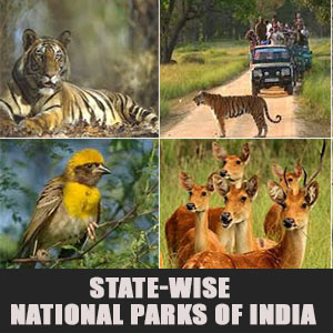 State-Wise National Parks Of India