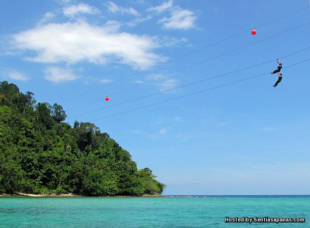 Coral Flyer (Flying Fox) Pulau Gaya