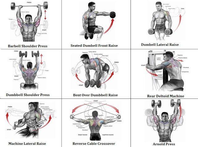 Get Ripped: At-Home Shoulder Workout | Health Articles