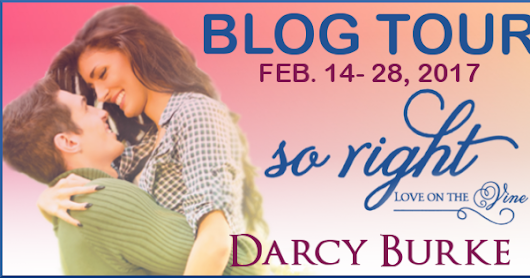 SO RIGHT Blog Tour for Darcy Burke. Review, Excerpt & Giveaway for a Wonderful series!