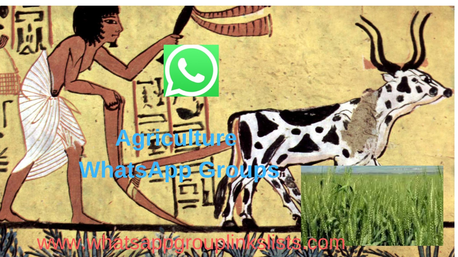 Join Agriculture WhatsApp Group Links List