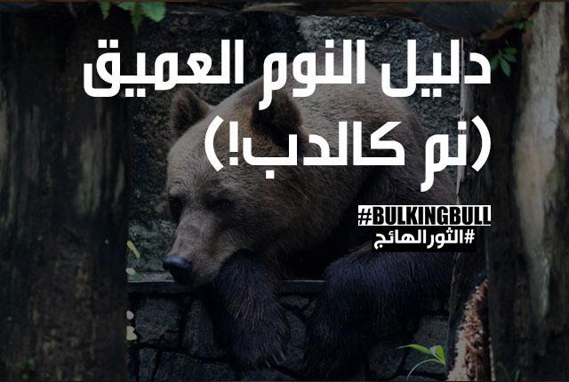 دليل النوم العميق (نم كالدب!)