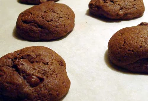 Tasty Double Chocolate Cookies