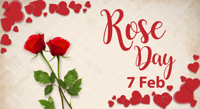 rose day images of couple
