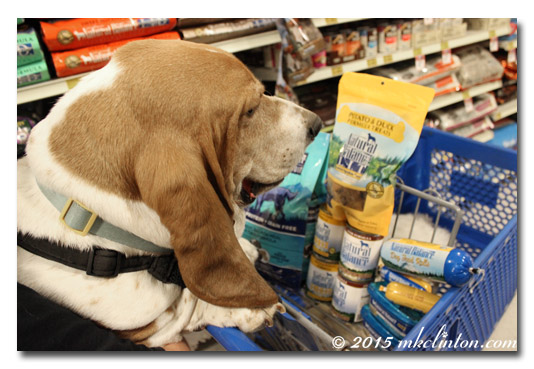 Basset with PetSmart shopping cart full of Natural Balance products