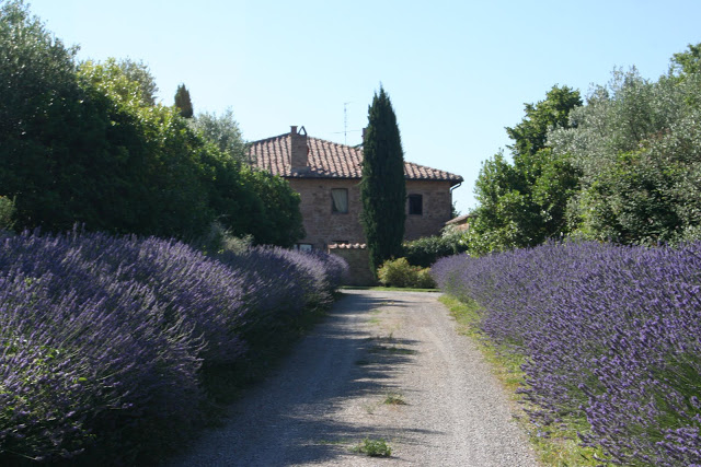 Travel: Tuscany