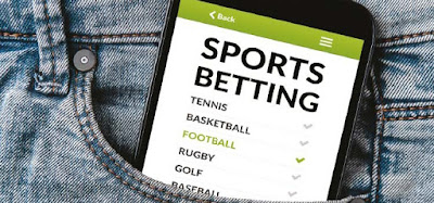 Guide to Betting on US Sports