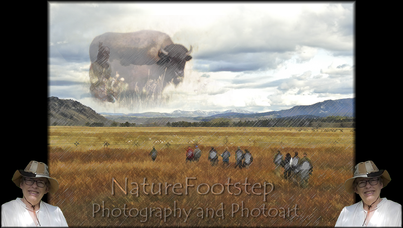 NatureFootstep