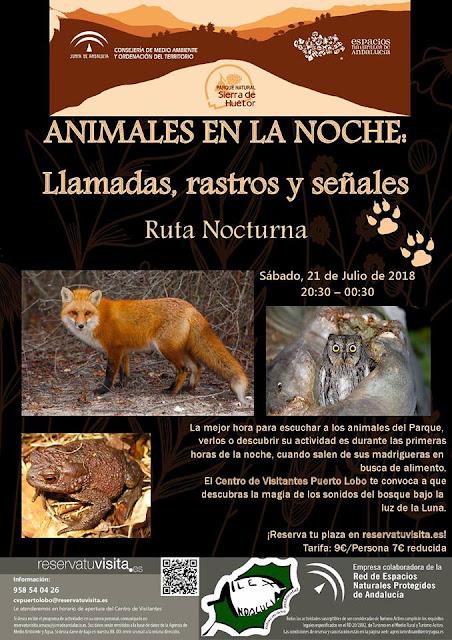 """Ruta """"Animales en la Noche"""" en la Sierra de Huétor"""