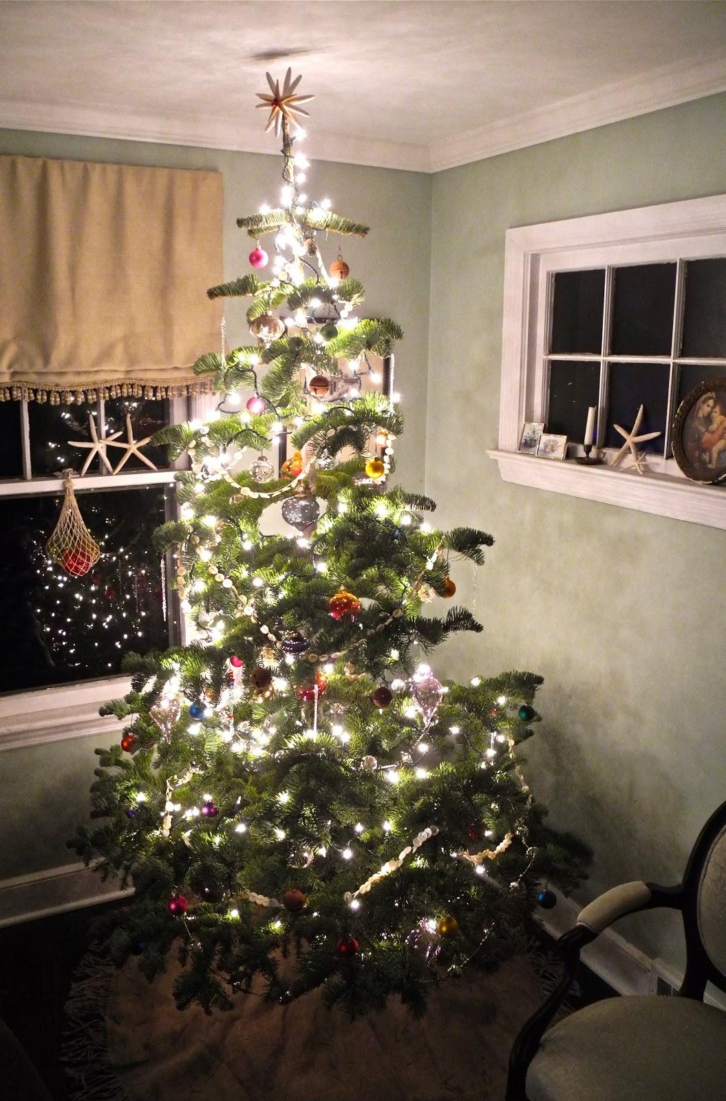 Seaglasssundays A Silvertip Christmas