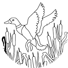 Best Images Duck Migration Coloring Pages For Print Online