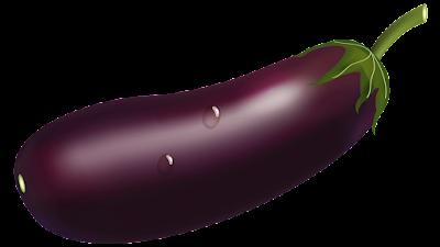 eggplant plant clipart