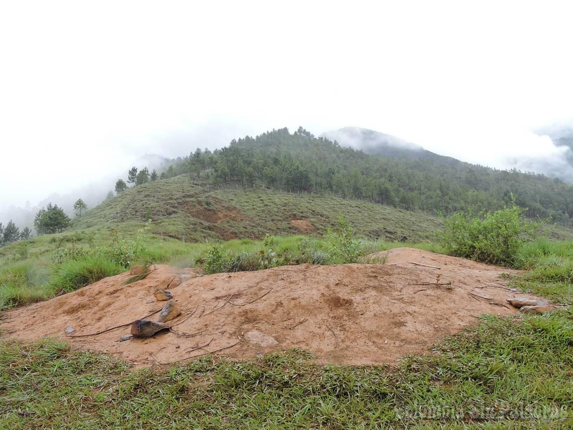 subida para el cerro quitasol