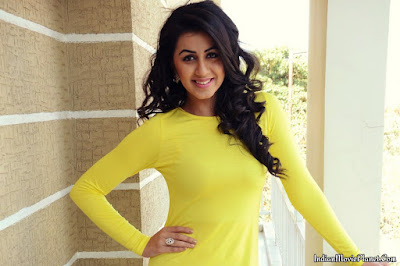 nikki galrani hot yellow dress stills wallpapers