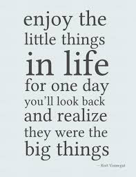 Quotes About Life And Happiness Tumblr: enjoy the little things in life for one day you'll look back and realize they were the big things