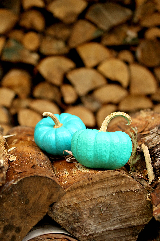 Turquoise Pumpkins