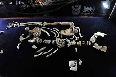 Kulit Manusia Ditemukan di Fosil 2 Juta Tahun
