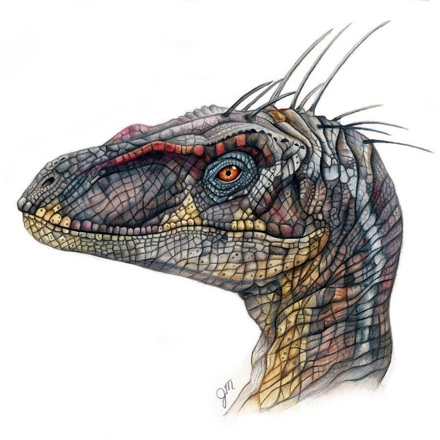 11-Velociraptor-Jurassic-Park-Julianna-www-designstack-co