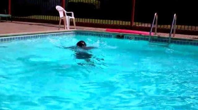 Τραγωδία: 4χρονο κοριτσάκι πνίγηκε σε πισίνα ξενοδοχείου