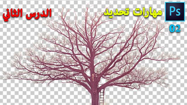 تحديد العناصر غير المنتظمة و الصعبة على برنامج الفوتوشوب Select in Photoshop
