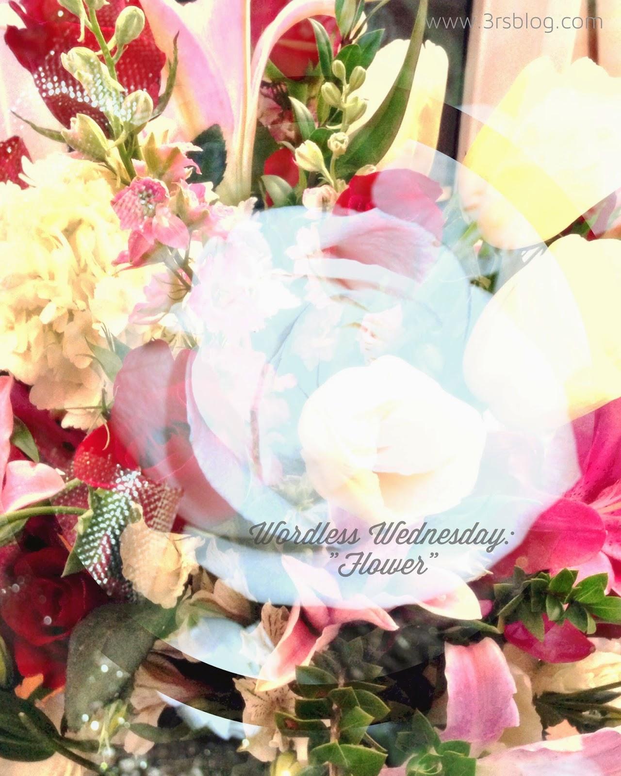 """Flower"" Wordless Wednesday 6/18/2014 on The 3 R's Blog"