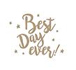 Spellbinders glimmer plate - BEST DAY EVER