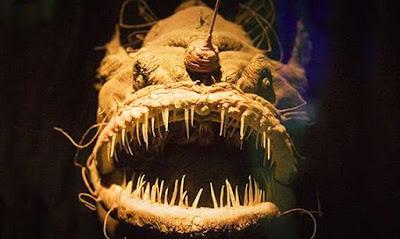 Ngeri! Inilah Ikan Raksasa Berwajah Paling Seram yang Pernah Ditemukan Manusia