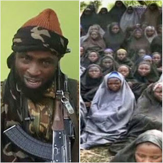 Thirty Chibok girls alive