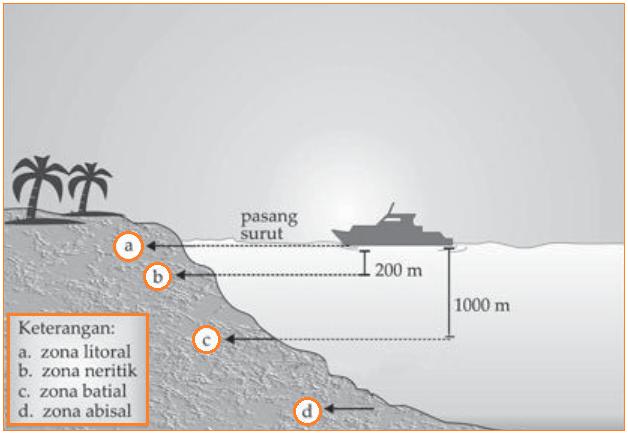 Gambar Macam-Macam Laut Menurut Kedalamannya - Zona Litoral, Neritik, Batial, dan Abisal