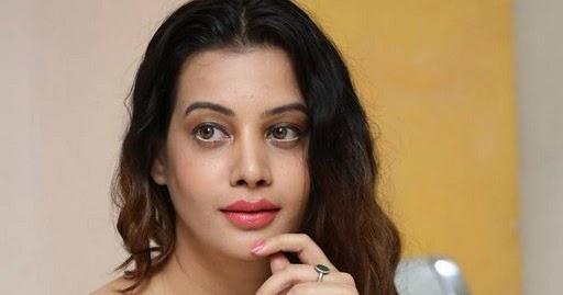 Diksha Panth Stills At MaayaMaal Pre Release Event