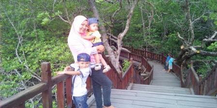 Akses / Lokasi Taman Wisata Mangrove Sukadana