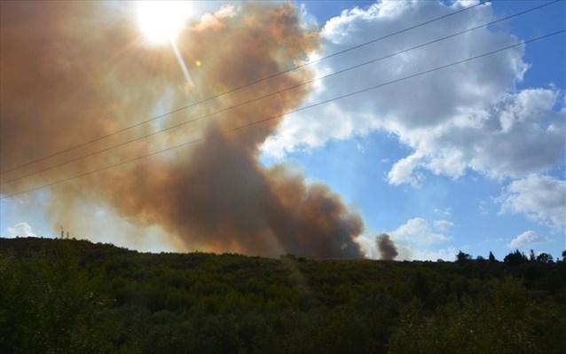 ΕΚΤΑΚΤΟ: Τρία μέτωπα φωτιάς αυτή την ώρα στην Θεσπρωτία