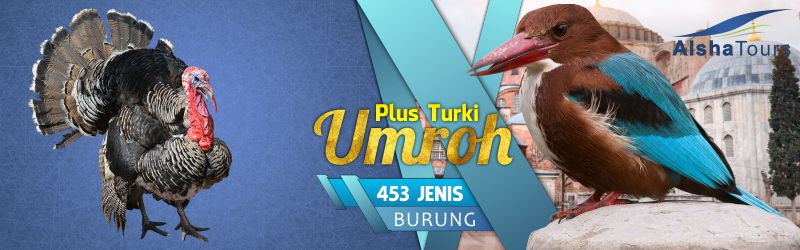 Paket Umroh Plus Turki Alsha Tour 2018 Turkey Bird