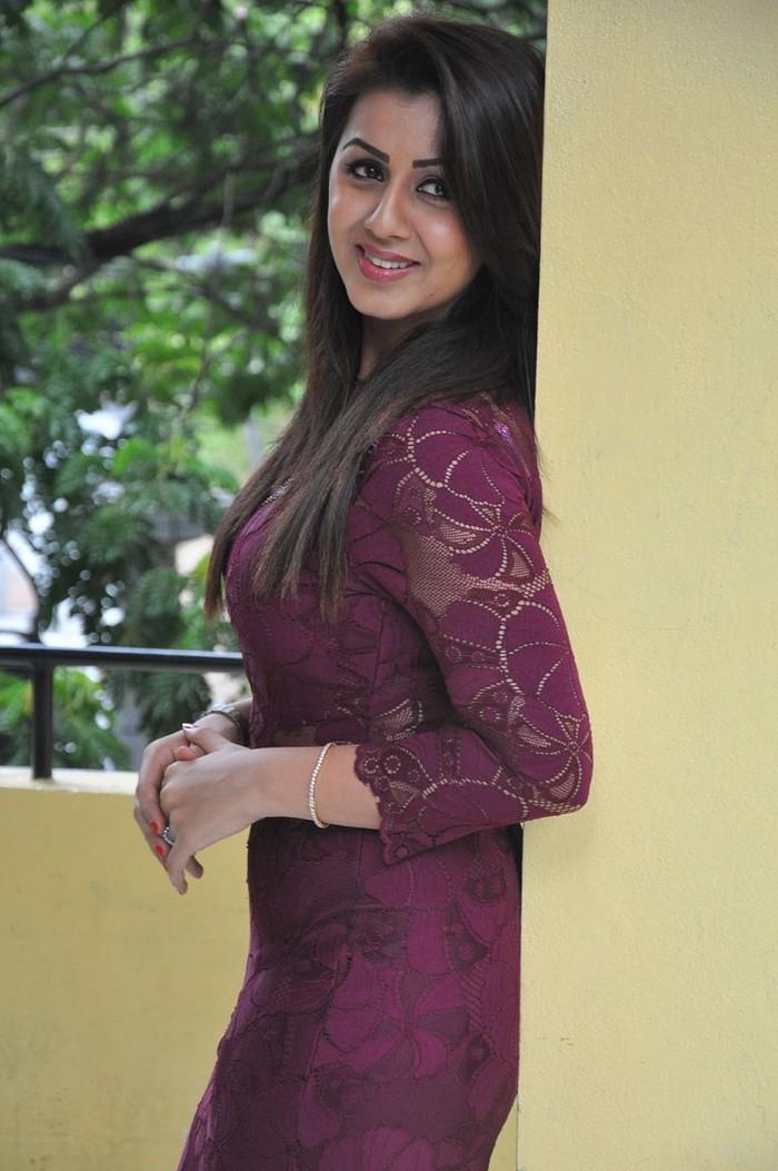 Actress Nikki Galrani In Brown Dress Awesome Photos