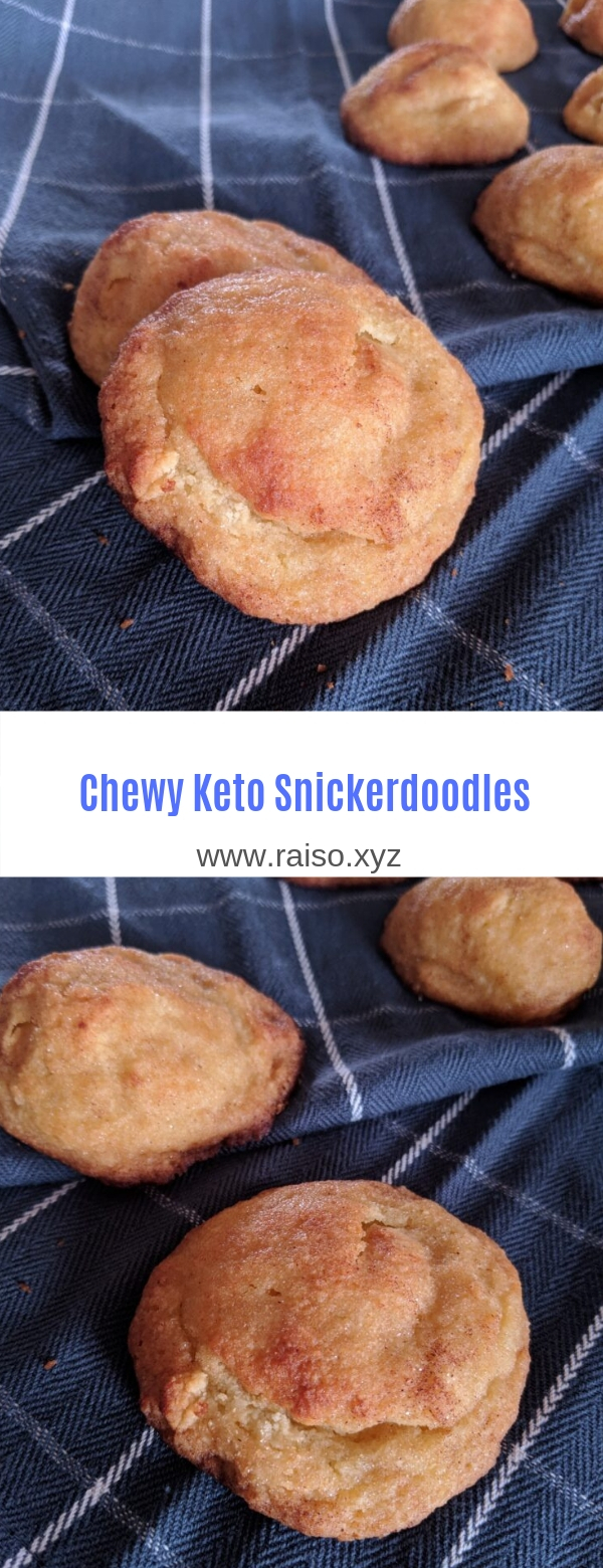 Chewy Keto Snickerdoodles