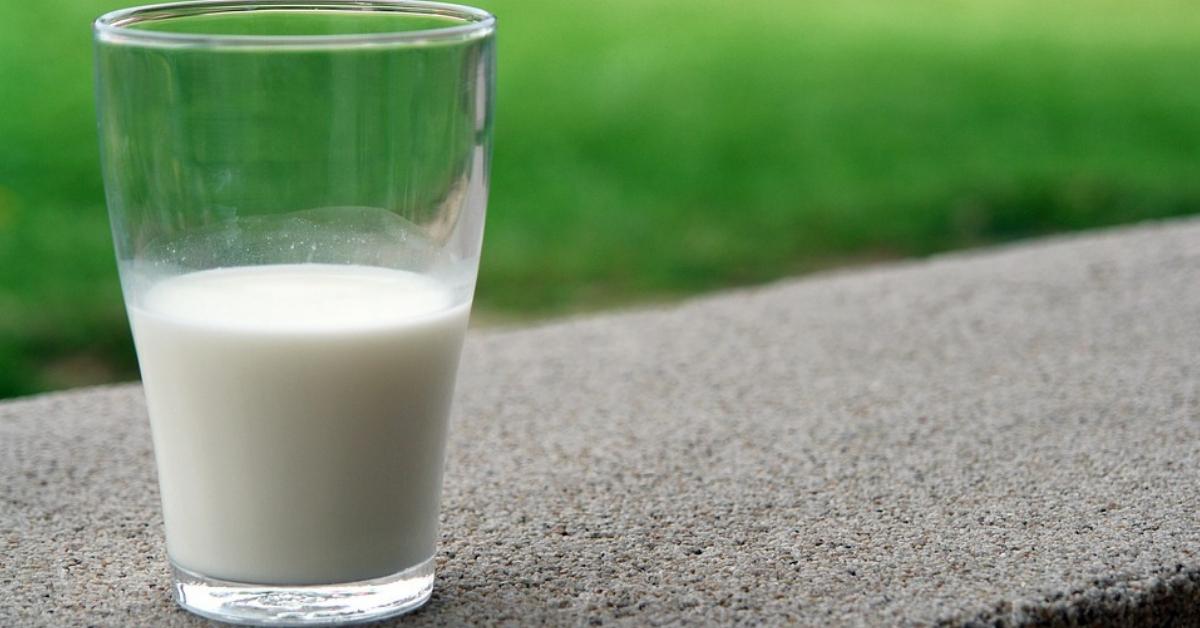 Rozsadne Odchudzanie Nietolerancja Laktozy Jak Sobie Z Tym Poradzic