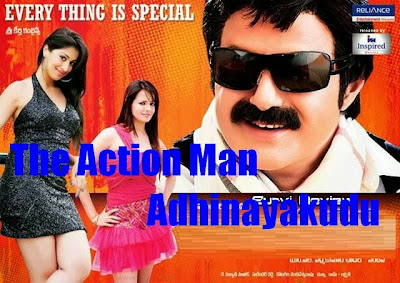 Poster Of The Action Man Adhinayakudu (2012) In hindi dubbed Dual Audio 300MB Compressed Small Size Pc Movie Free Download Only At worldfree4u.com