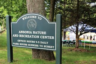 Ansonia Nature Center Summer Camp