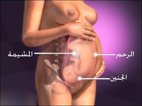 كيف تحدث الولادة : وكيف يعمل جسدي أثناء الولادة ؟