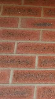S A bricks