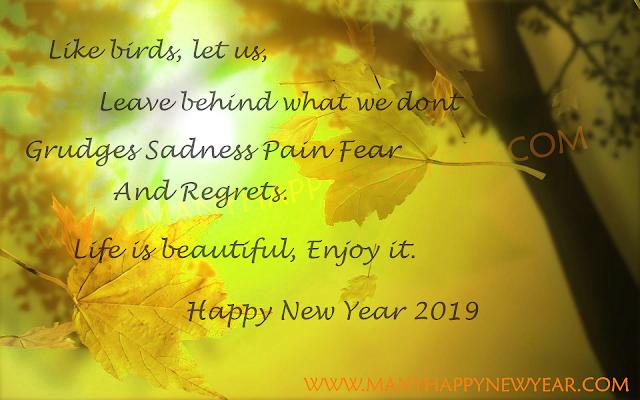happy new year 2019 captions