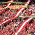 Liliane Santos:  Inter bate recorde de público após estádio reformado