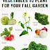 #vegetable_gardening : Vegetables to plant for your fall garden