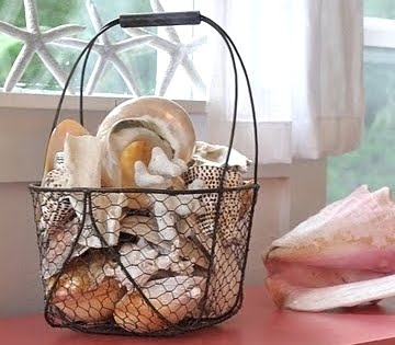 displaying big seashells in wire basket