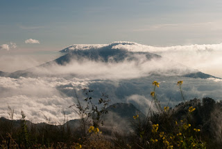 Jalur Pendakian Gunung Butak Via Princi