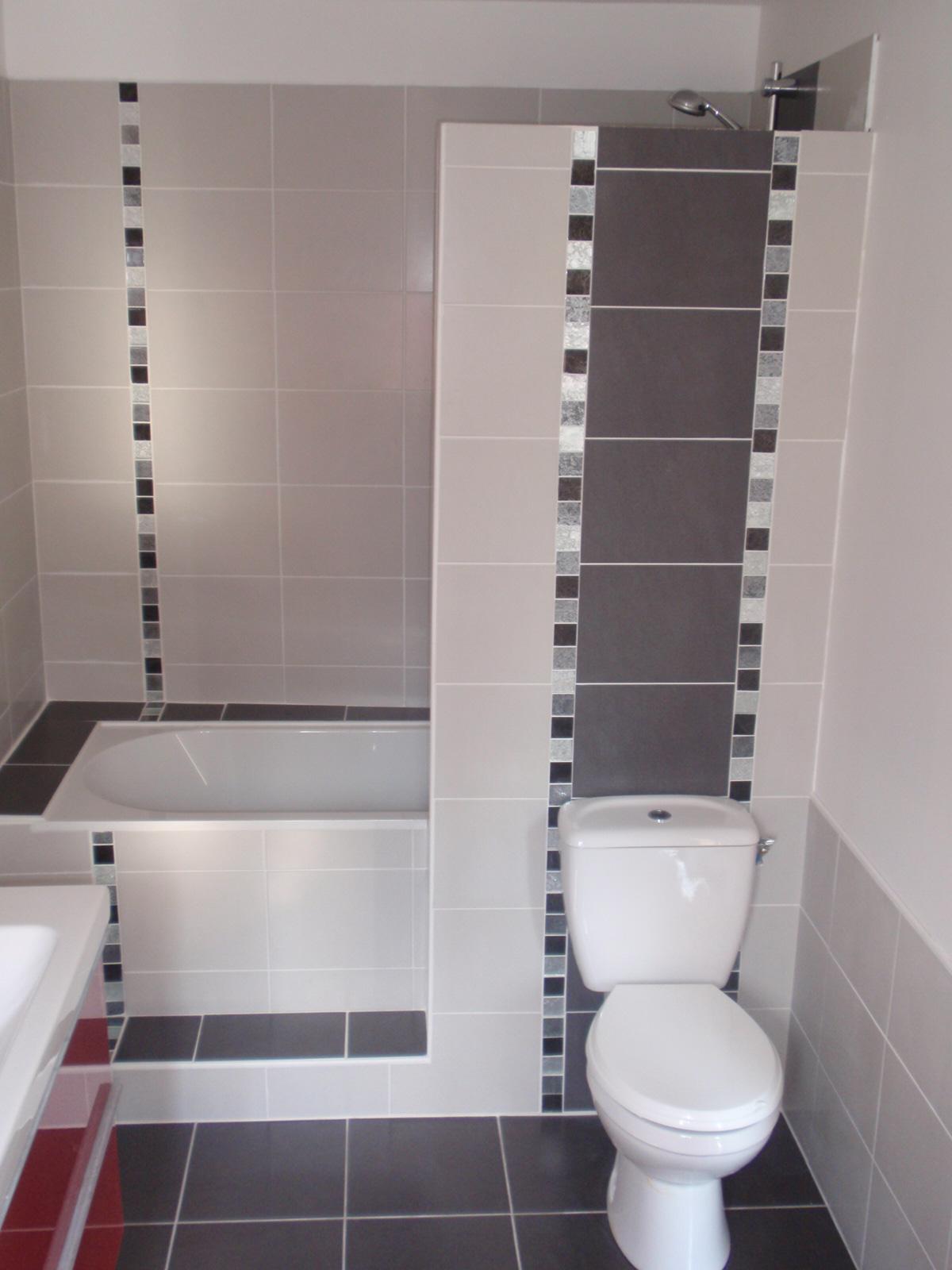 idee salle de bain avec douche et baignoire pr l vement d 39 chantillons et une. Black Bedroom Furniture Sets. Home Design Ideas